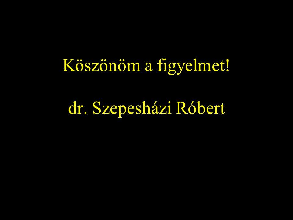 Köszönöm a figyelmet! dr. Szepesházi Róbert
