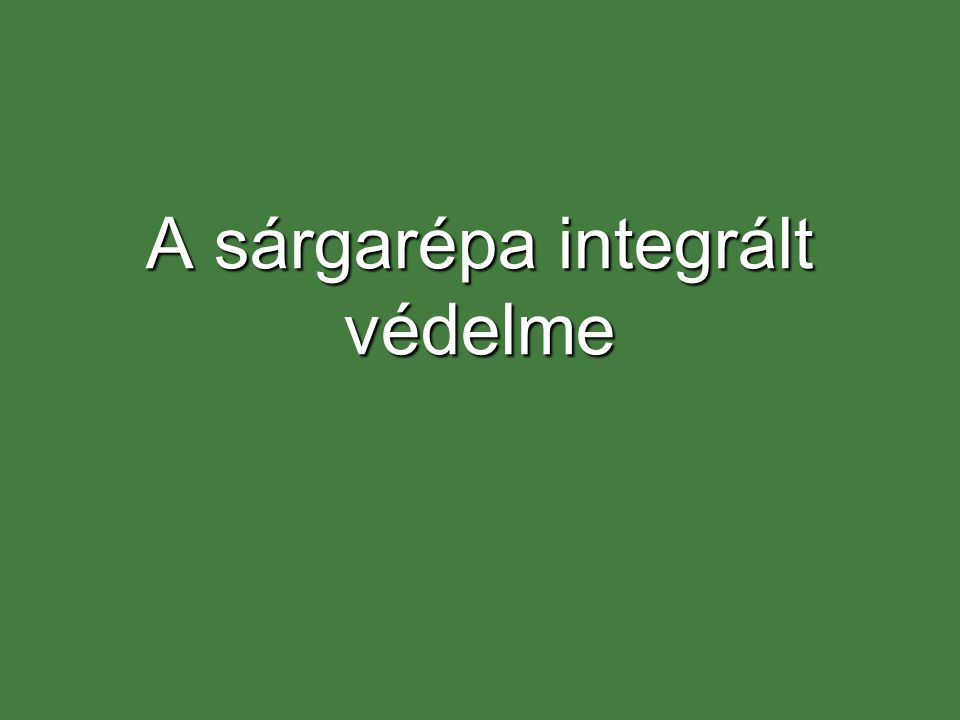 A sárgarépa integrált védelme
