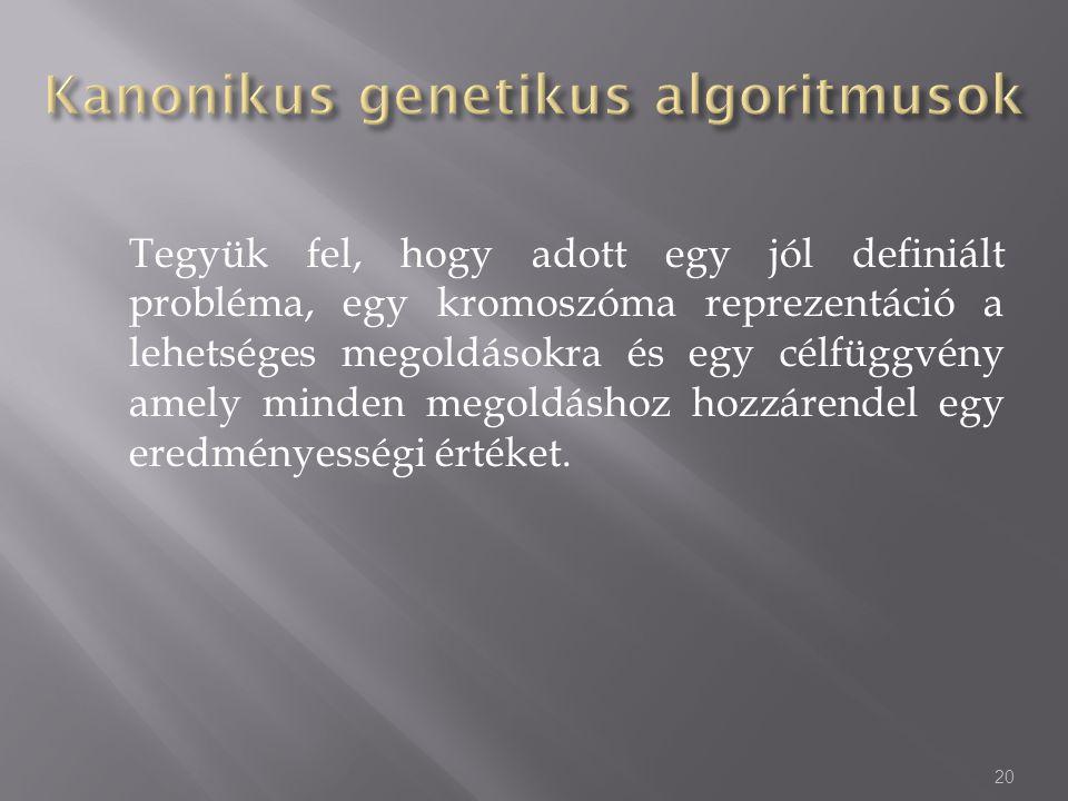 Kanonikus genetikus algoritmusok