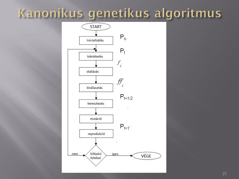 Kanonikus genetikus algoritmus