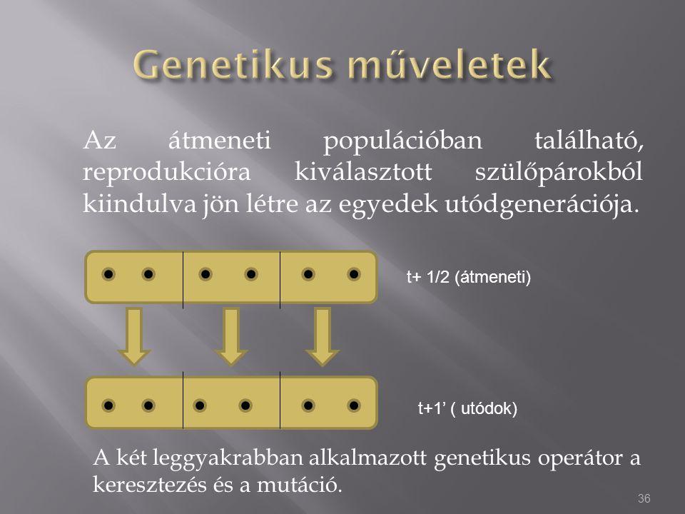 Genetikus műveletek Az átmeneti populációban található, reprodukcióra kiválasztott szülőpárokból kiindulva jön létre az egyedek utódgenerációja.