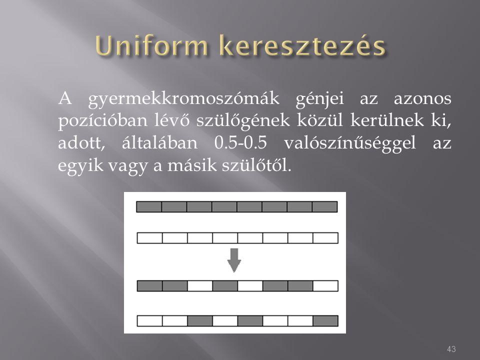 Uniform keresztezés