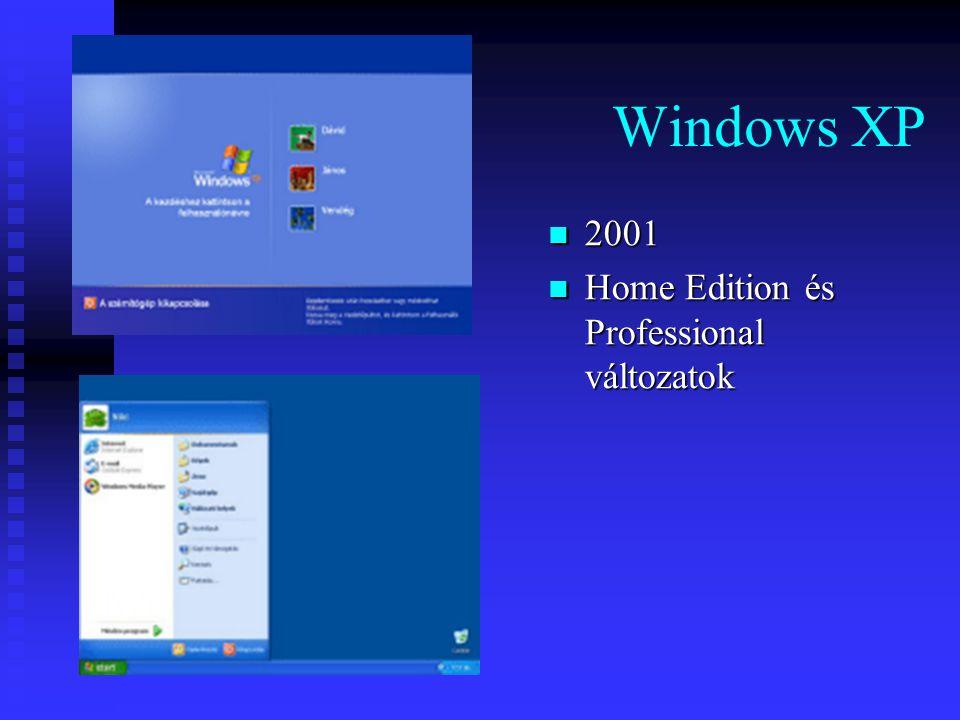 Windows XP 2001 Home Edition és Professional változatok
