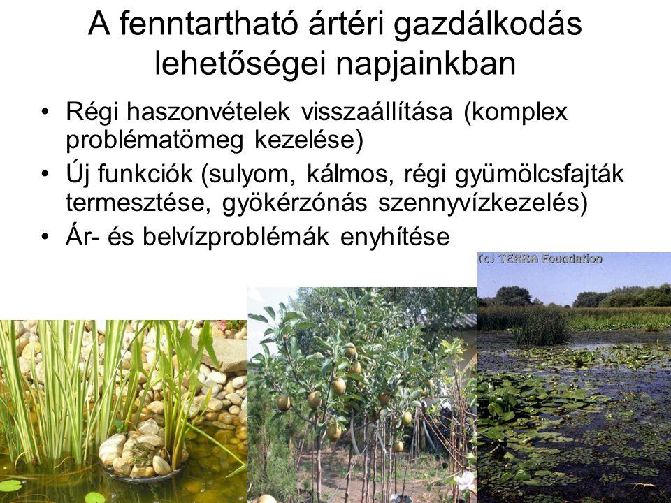 A fenntartható ártéri gazdálkodás lehetőségei napjainkban