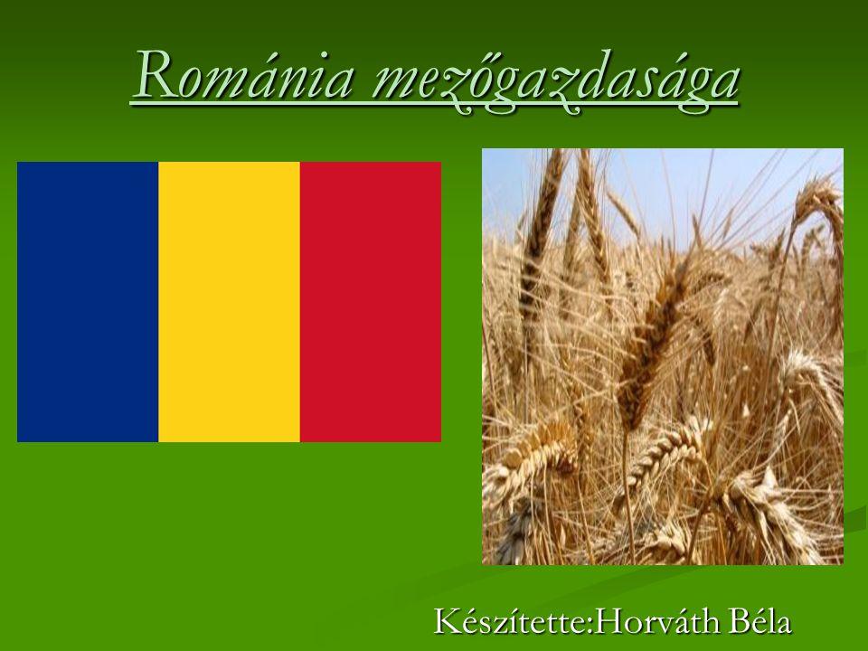 Románia mezőgazdasága