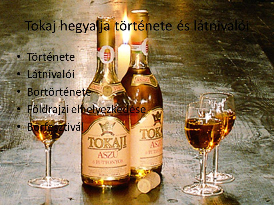 Tokaj hegyalja története és látnivalói