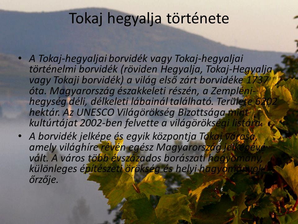 Tokaj hegyalja története