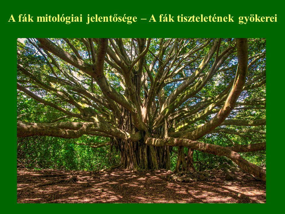 A fák mitológiai jelentősége – A fák tiszteletének gyökerei