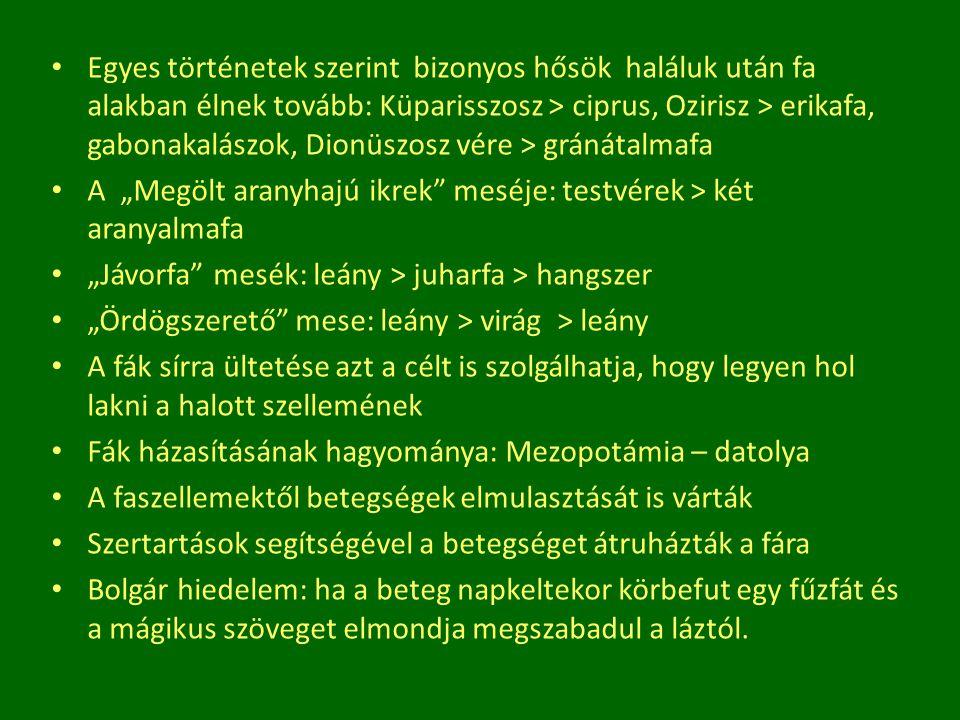 Egyes történetek szerint bizonyos hősök haláluk után fa alakban élnek tovább: Küparisszosz > ciprus, Ozirisz > erikafa, gabonakalászok, Dionüszosz vére > gránátalmafa
