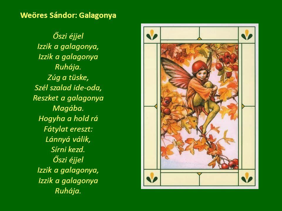 Weöres Sándor: Galagonya