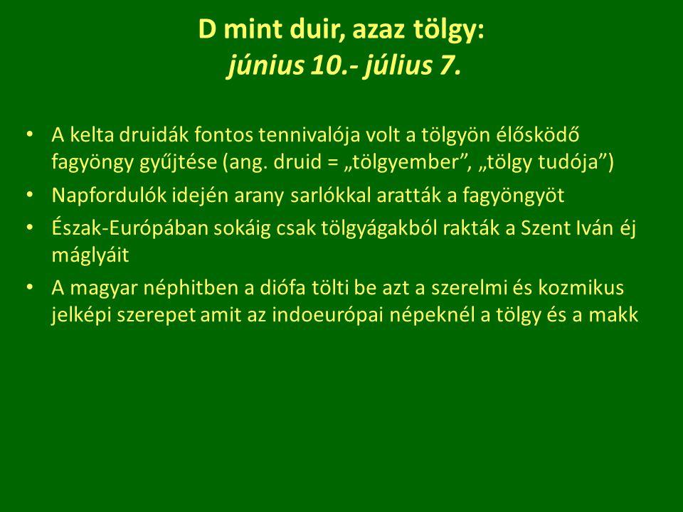 D mint duir, azaz tölgy: június 10.- július 7.