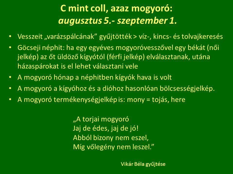 C mint coll, azaz mogyoró: augusztus 5.- szeptember 1.