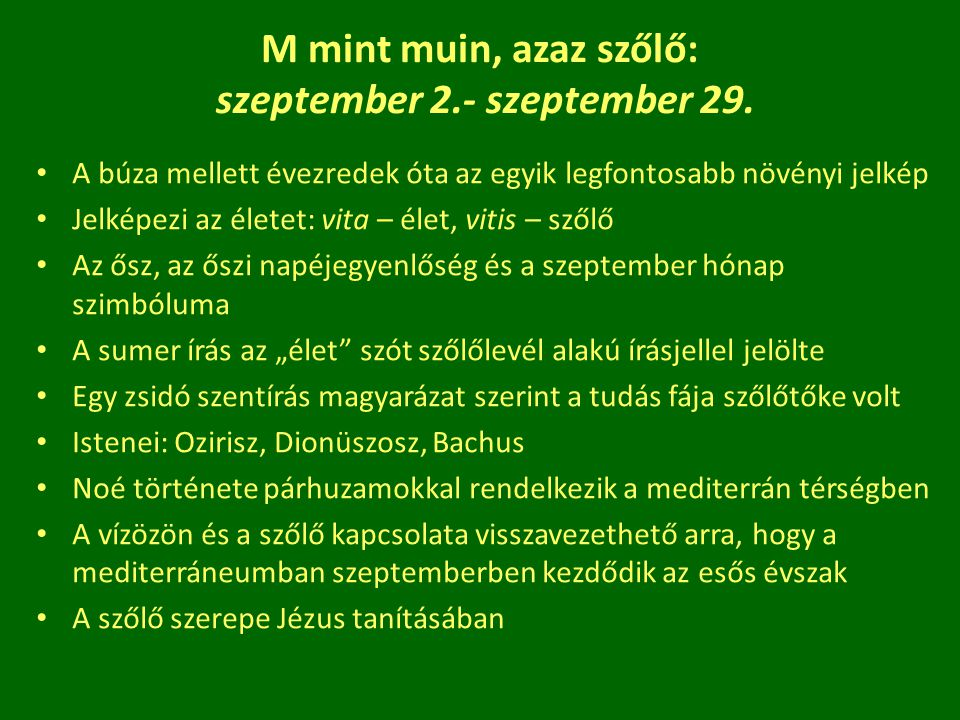 M mint muin, azaz szőlő: szeptember 2.- szeptember 29.