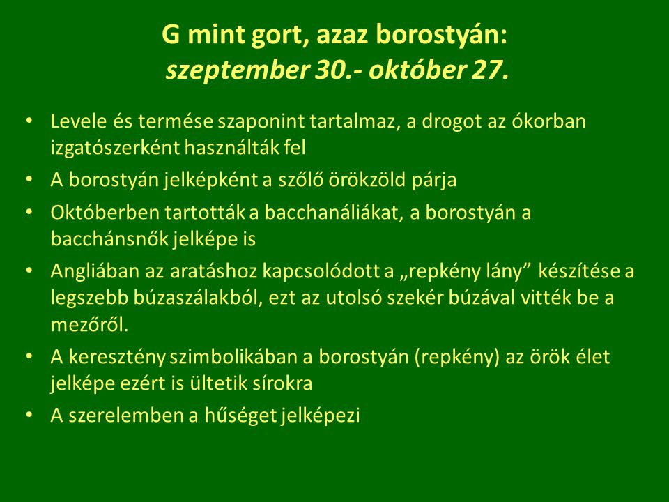 G mint gort, azaz borostyán: szeptember 30.- október 27.
