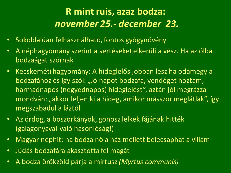 R mint ruis, azaz bodza: november 25.- december 23.