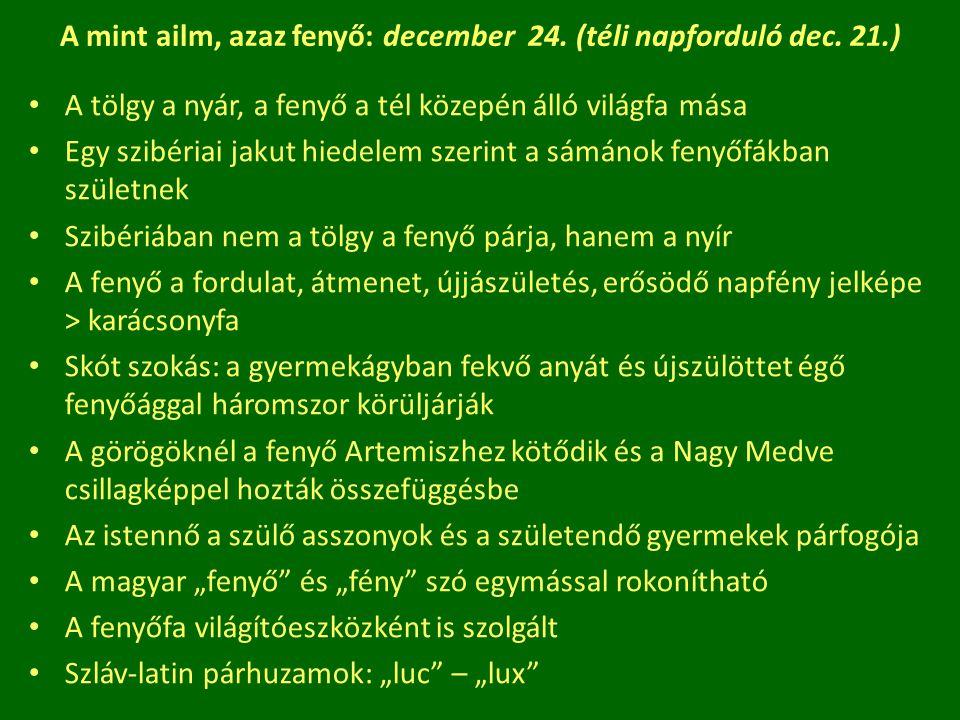 A mint ailm, azaz fenyő: december 24. (téli napforduló dec. 21.)
