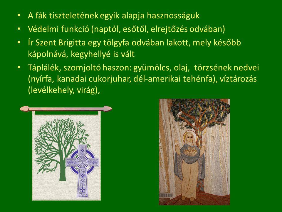 A fák tiszteletének egyik alapja hasznosságuk