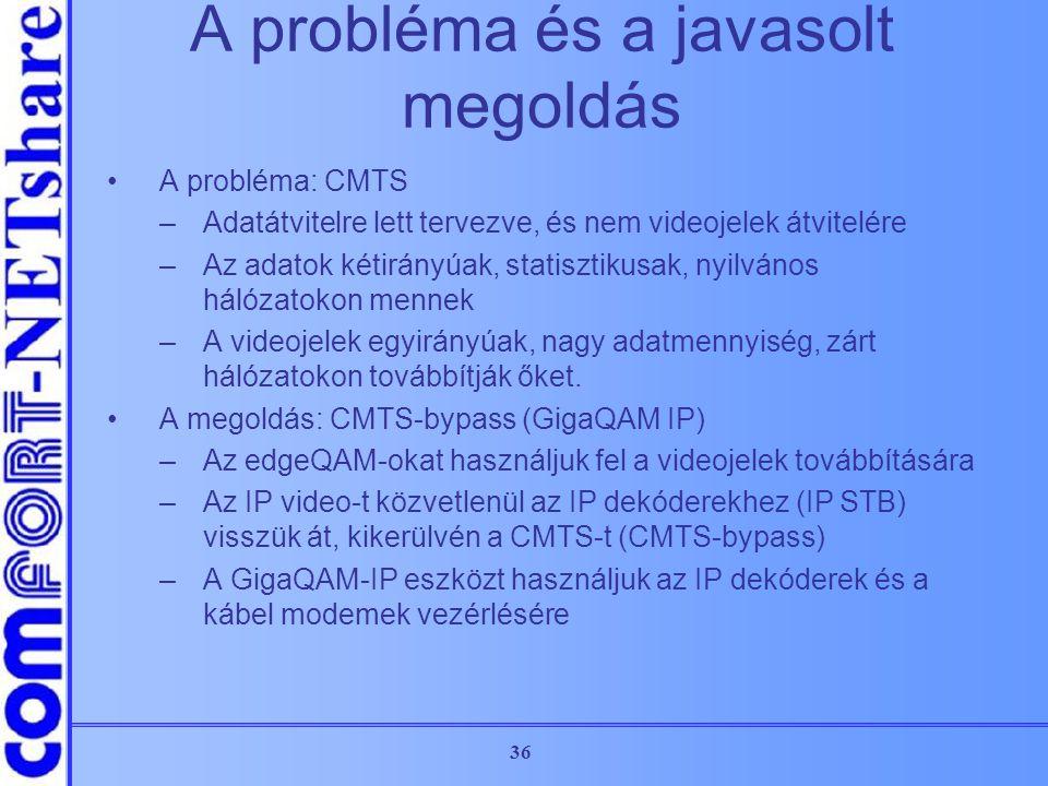 A probléma és a javasolt megoldás