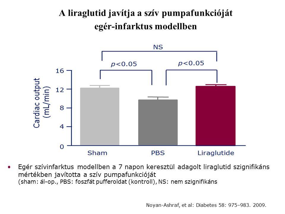 A liraglutid javítja a szív pumpafunkcióját egér-infarktus modellben