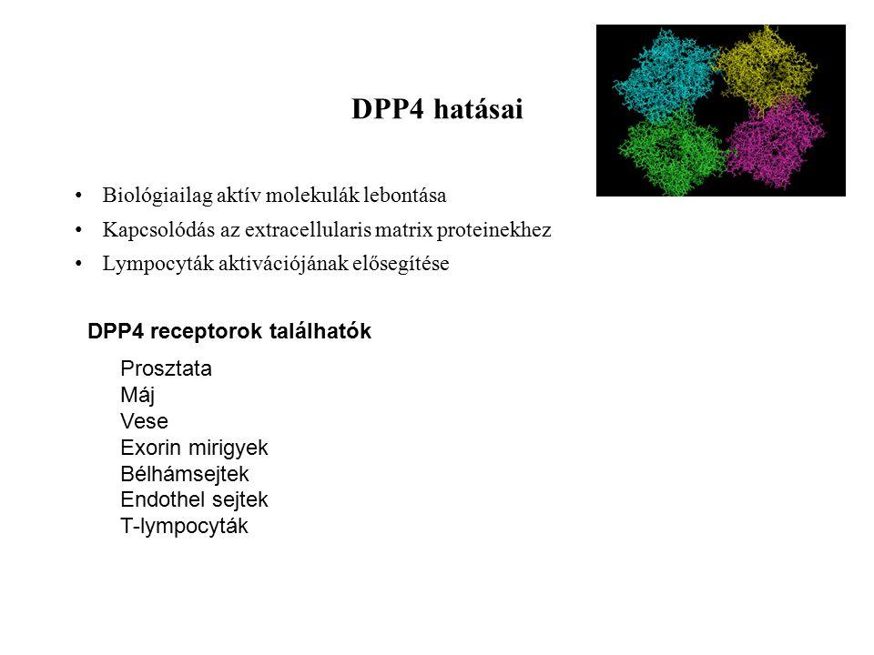 DPP4 hatásai Biológiailag aktív molekulák lebontása
