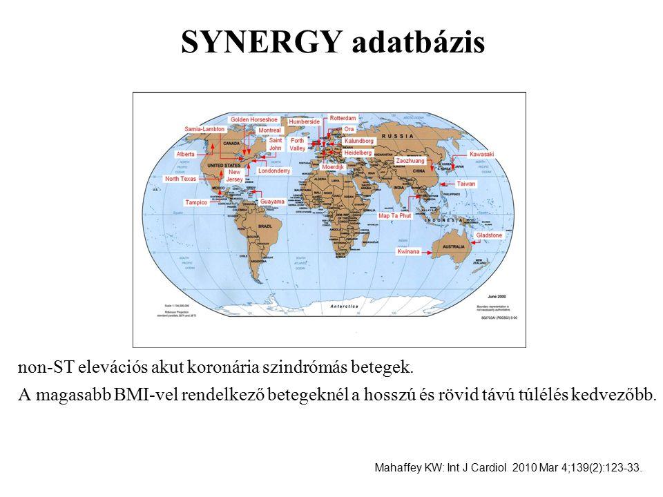 SYNERGY adatbázis