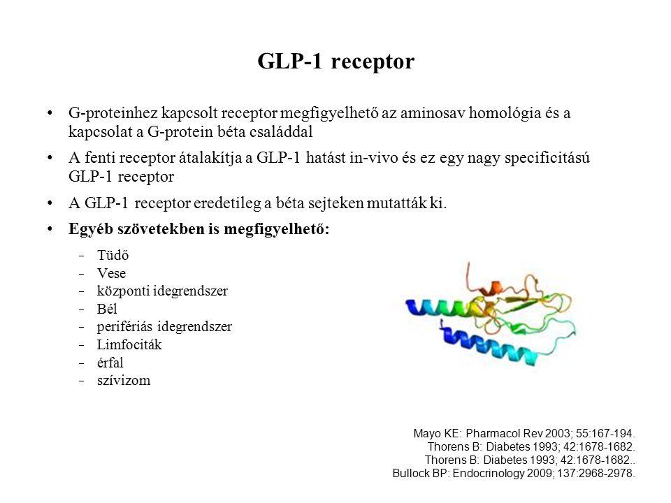 GLP-1 receptor G-proteinhez kapcsolt receptor megfigyelhető az aminosav homológia és a kapcsolat a G-protein béta családdal.