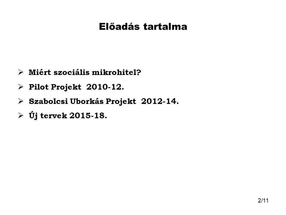 Előadás tartalma Miért szociális mikrohitel Pilot Projekt 2010-12.