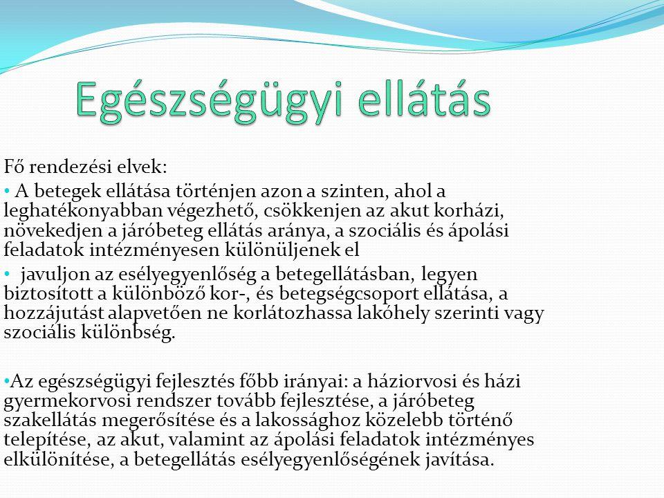 Egészségügyi ellátás Fő rendezési elvek: