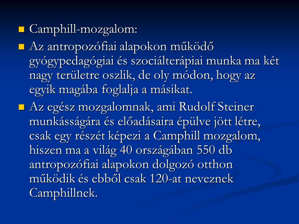 Camphill-mozgalom: