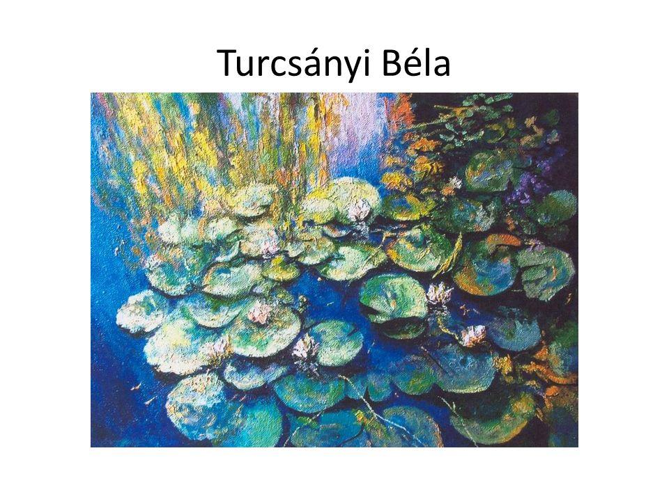 Turcsányi Béla