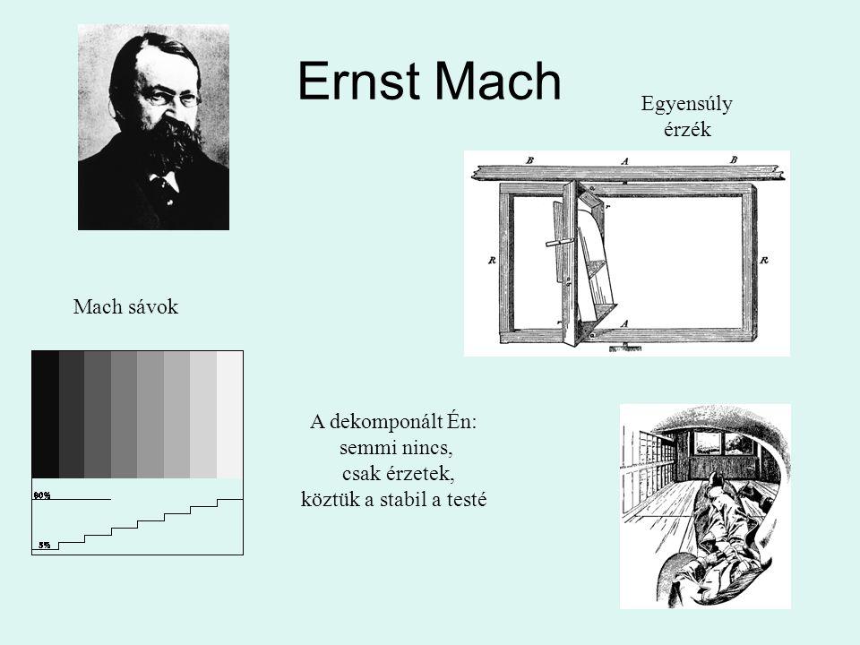 Ernst Mach Egyensúly érzék Mach sávok A dekomponált Én: semmi nincs,