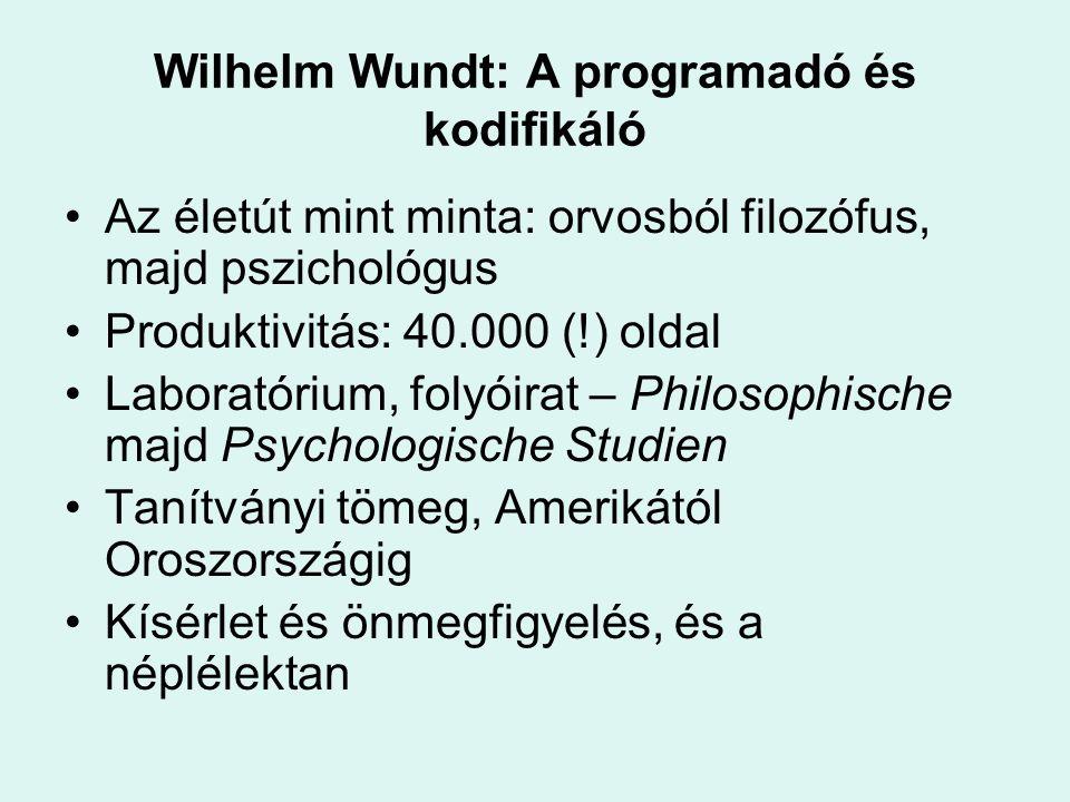Wilhelm Wundt: A programadó és kodifikáló