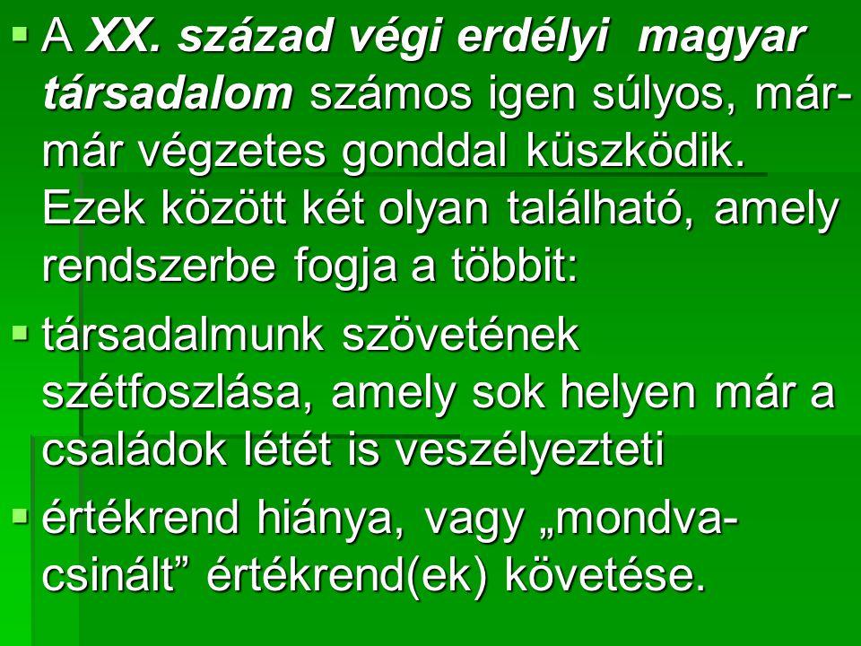 A XX. század végi erdélyi magyar társadalom számos igen súlyos, már-már végzetes gonddal küszködik. Ezek között két olyan található, amely rendszerbe fogja a többit: