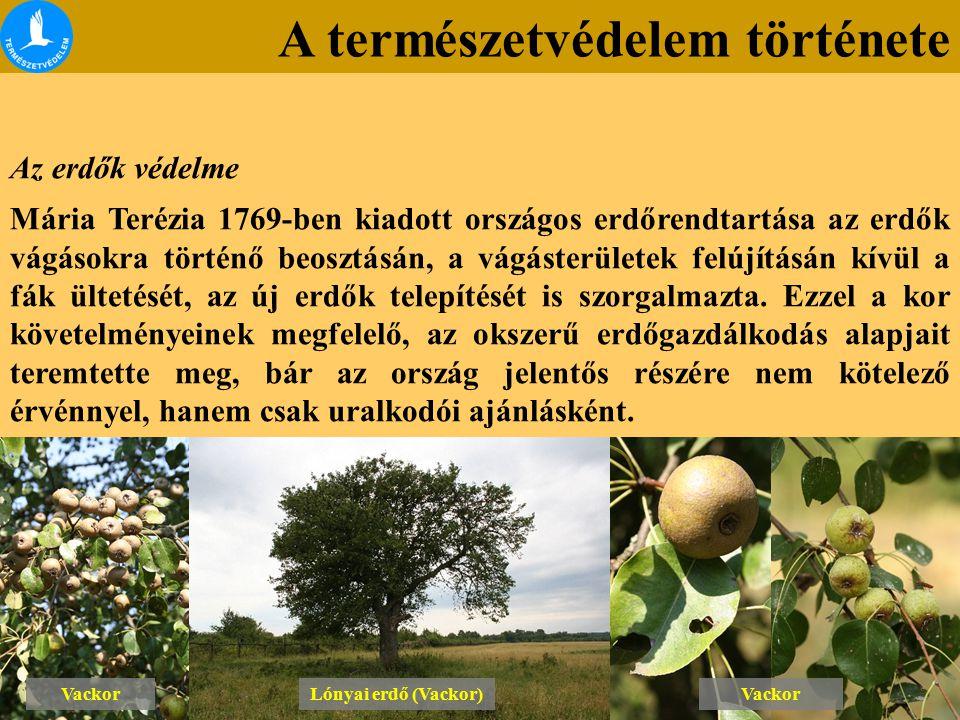 A természetvédelem története