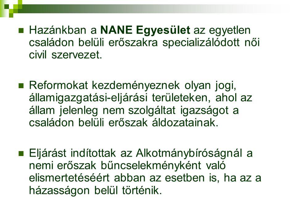Hazánkban a NANE Egyesület az egyetlen családon belüli erőszakra specializálódott női civil szervezet.