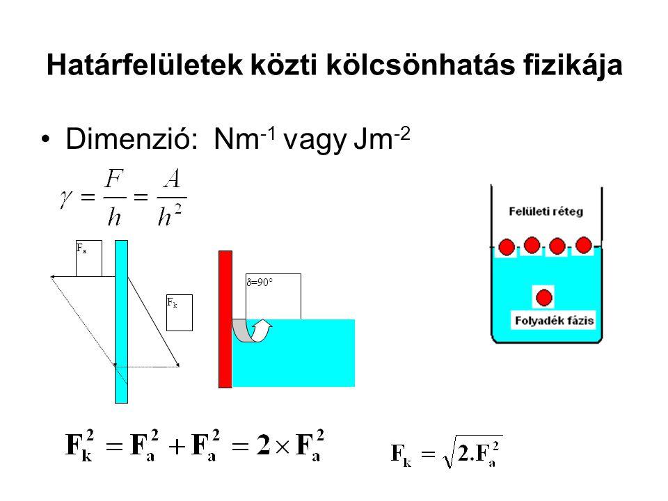 Határfelületek közti kölcsönhatás fizikája