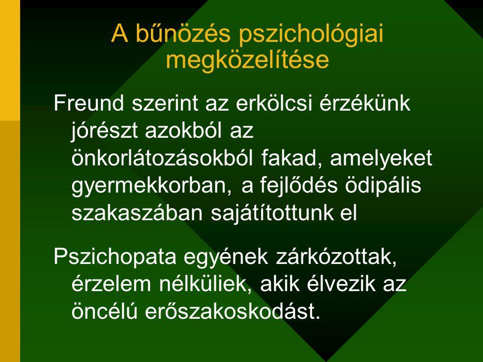 A bűnözés pszichológiai megközelítése