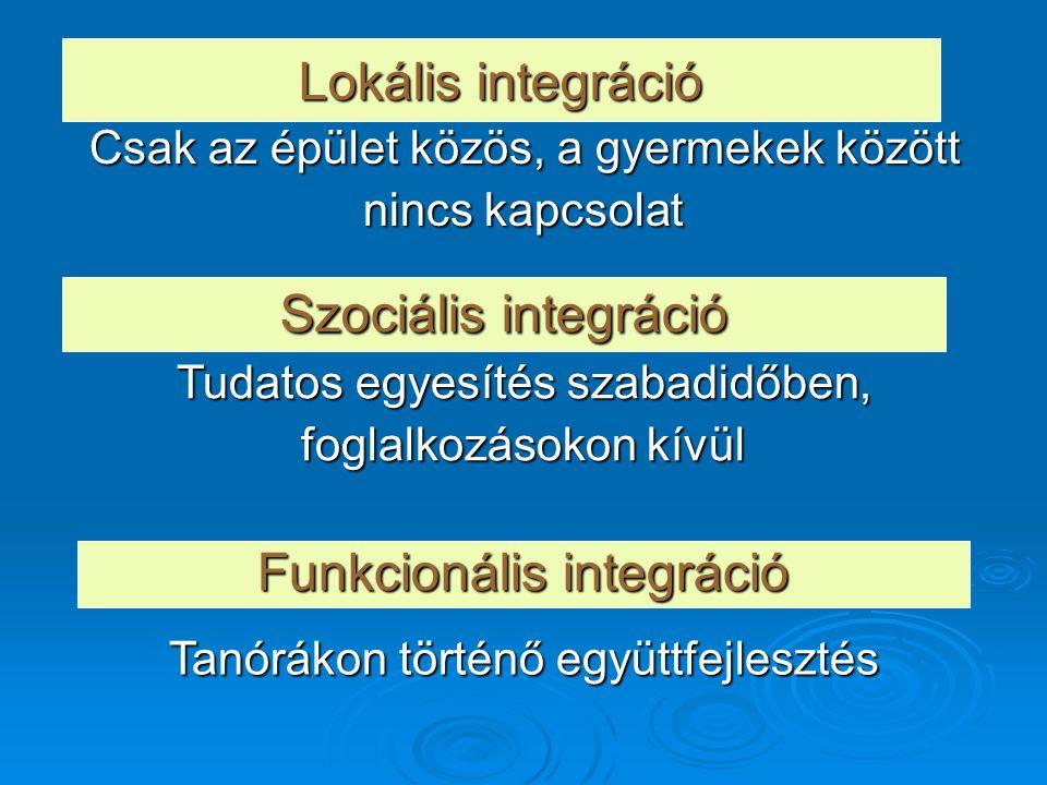 Funkcionális integráció