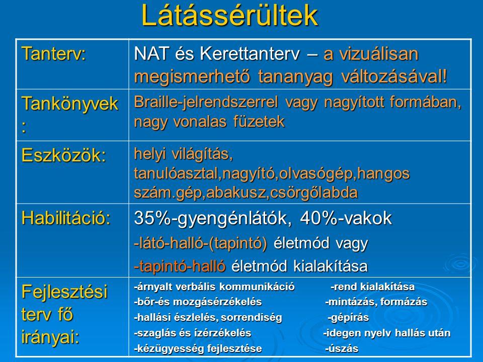 Látássérültek Tanterv: