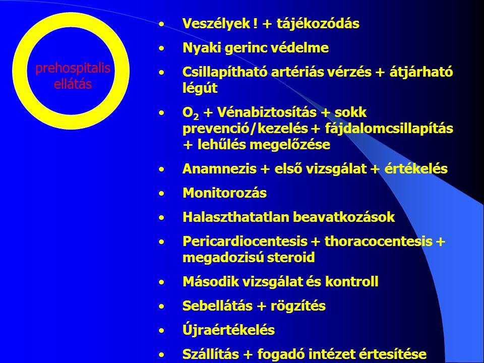 prehospitalis ellátás