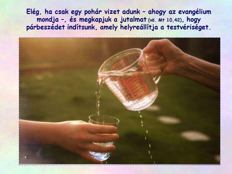 Elég, ha csak egy pohár vizet adunk – ahogy az evangélium mondja –, és megkapjuk a jutalmat (vö.