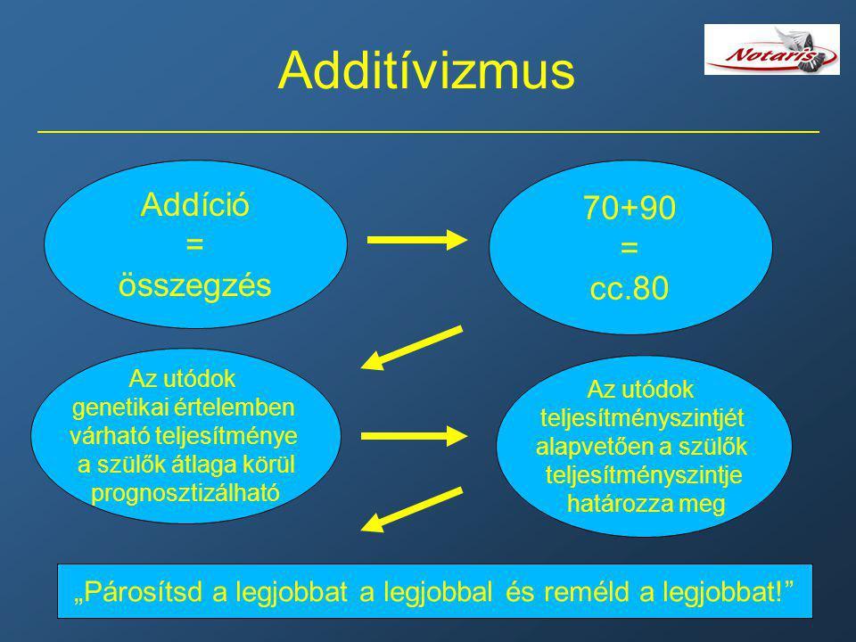 Additívizmus Addíció 70+90 = = összegzés cc.80