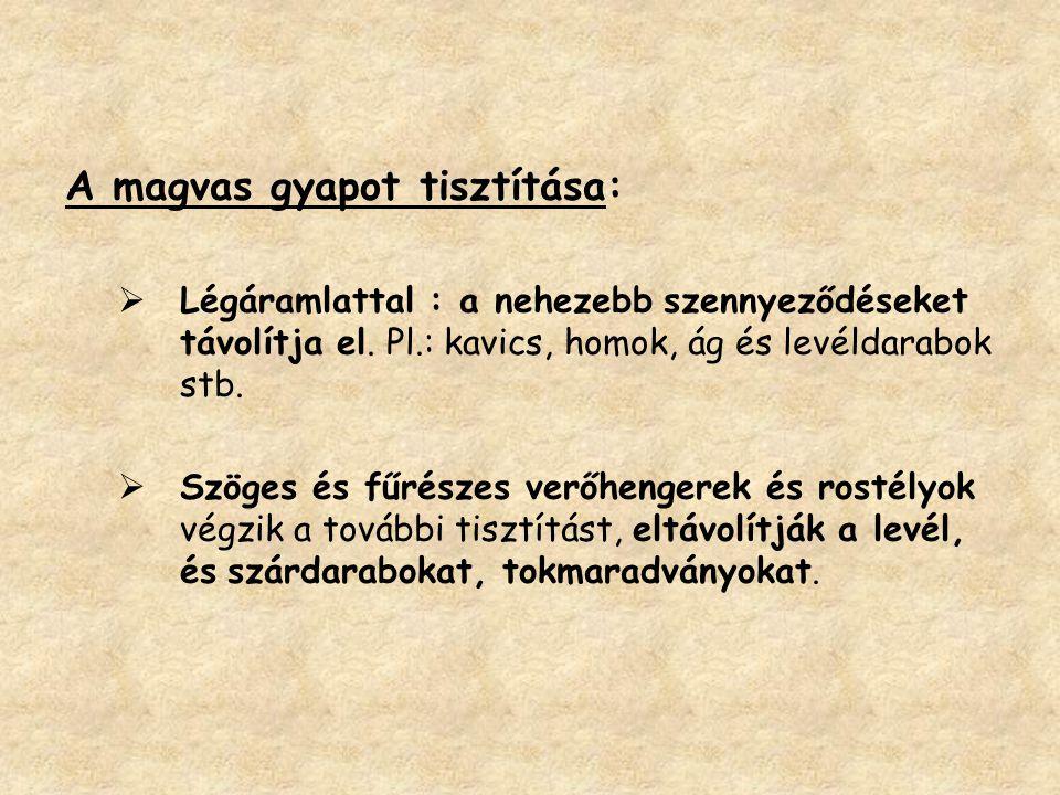 A magvas gyapot tisztítása: