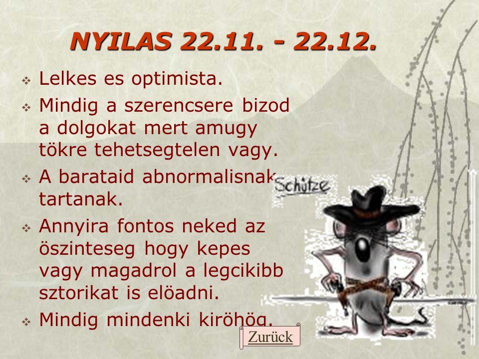 NYILAS 22.11. - 22.12. Lelkes es optimista.