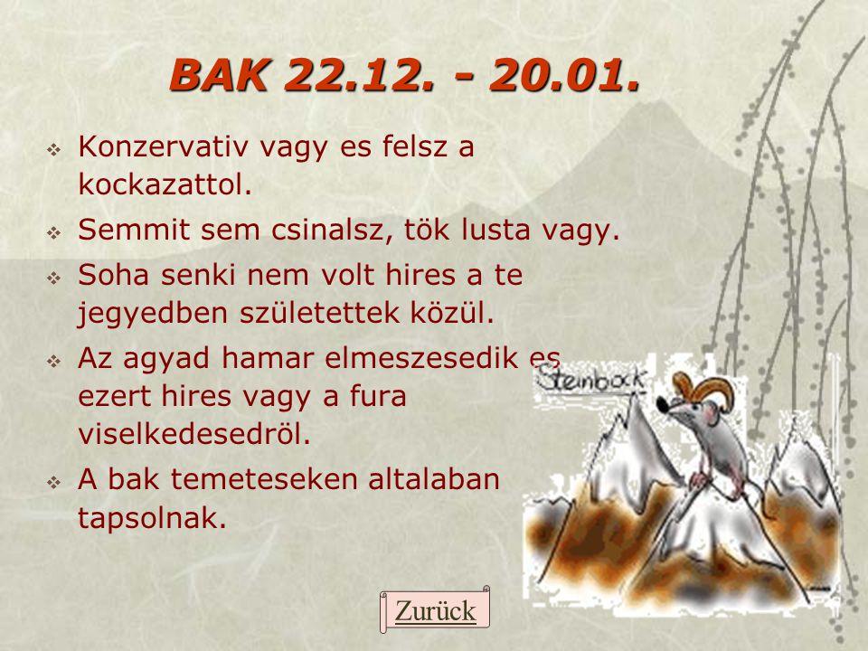BAK 22.12. - 20.01. Konzervativ vagy es felsz a kockazattol.