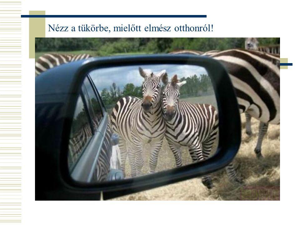 Nézz a tükörbe, mielőtt elmész otthonról!