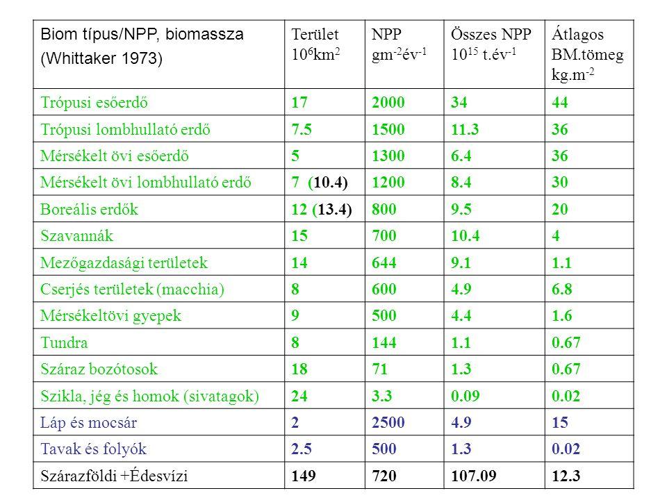 Biom típus/NPP, biomassza