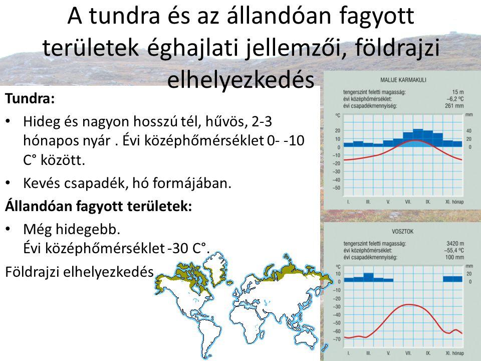 A tundra és az állandóan fagyott területek éghajlati jellemzői, földrajzi elhelyezkedés