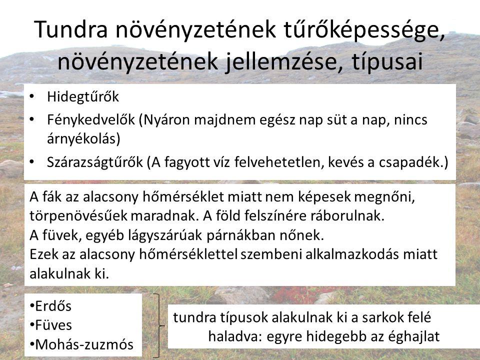 Tundra növényzetének tűrőképessége, növényzetének jellemzése, típusai