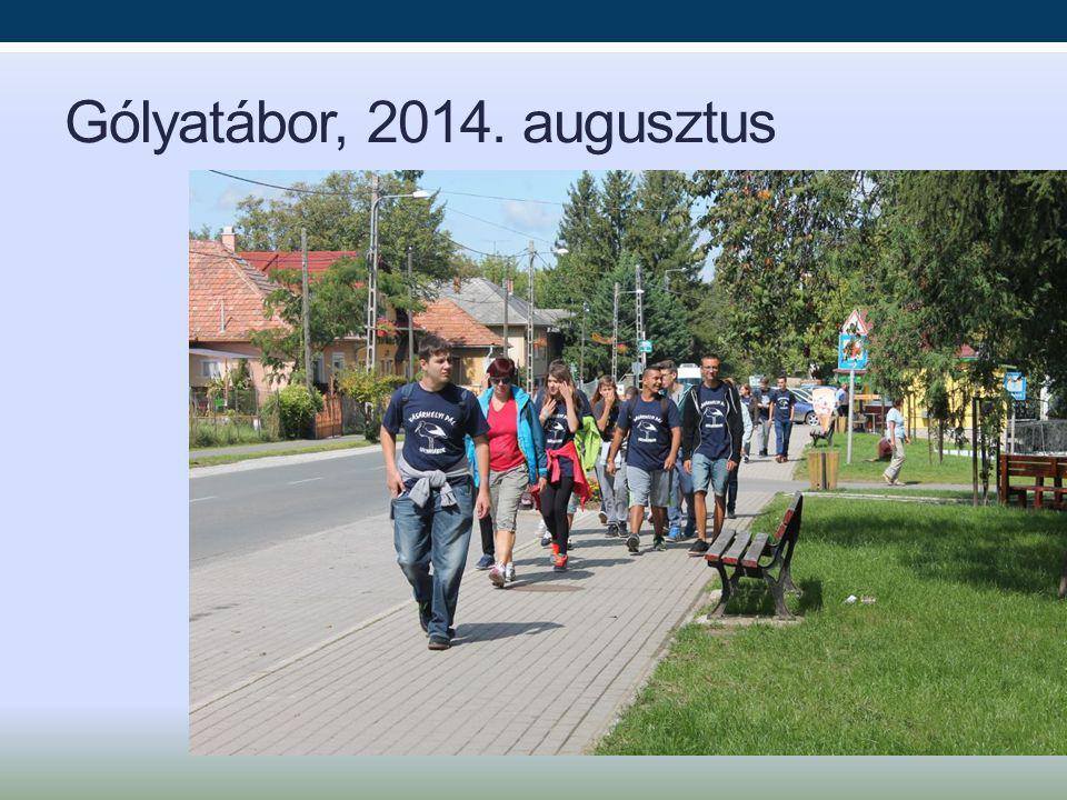 Gólyatábor, 2014. augusztus